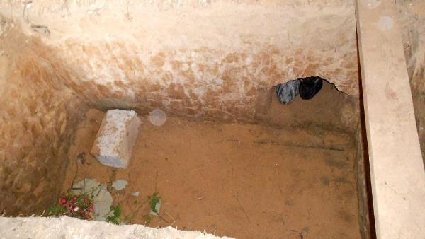Рассмотрим за и против содержания и разведения кроликов в ямах